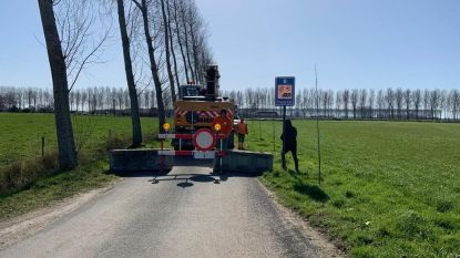 Maldegem, Assenede en Sint-Laureins sluiten alle grensovergangen met Nederland