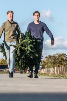 Elster tieners veroveren online kerstbomenhandel in regio