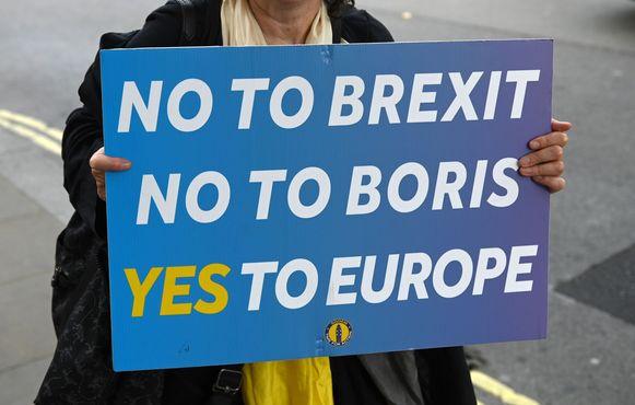 Een anti-brexitdemonstrant houdt een bord omhoog met nee aan brexit, nee aan Boris en ja aan Europa.