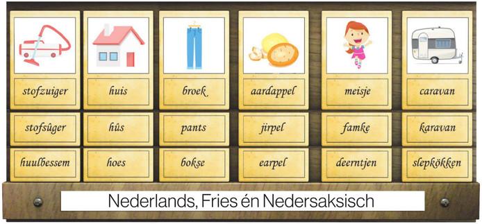 Het Nedersaksisch, waar het Achterhoeks onderdeel van is, wordt een officiële taal in Nederland.