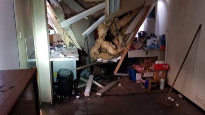 """""""Ik had me nét rechtgezet"""": garagist Steven De Vlieger (42) ontsnapt aan de dood nadat naaldboom van 25 meter op zijn bureau belandt"""