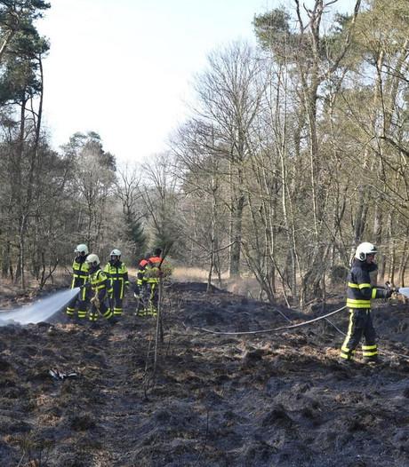 Brandweer blust natuurbranden in Moergestel en Udenhout