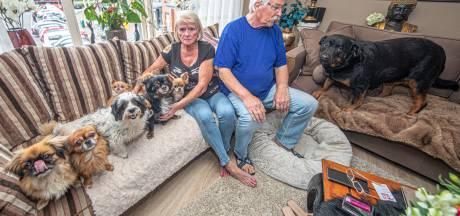 Johnny en Rinske dreigen huis te verliezen vanwege hun 9 honden:  'Wegdoen? Nooit. Dan maar op straat'