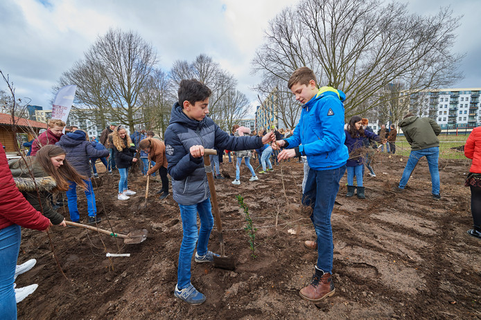 Vlnr: Menno en Alec van de Elzeneindschool planten een boom voor de Tiny Forest.
