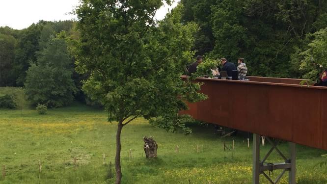 Facelift Wolfsputten is klaar: hangend platform biedt prachtig uitzicht over natuurgebied