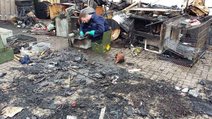 Paukeslag, dinsdagmorgen: mensen van de Explosieven Opruimingsdienst Defensie (EOD) doen onderzoek na een schuurbrand, waarbij honderden kilo's wapentuig uit WO II werden gevonden. De voorraad is inmiddels vernietigd.