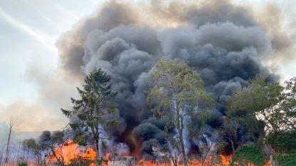 Na zware brand bij Boomkwekerij De Bock in Nederename: straten in de buurt blijven afgesloten omdat brandweer nablust