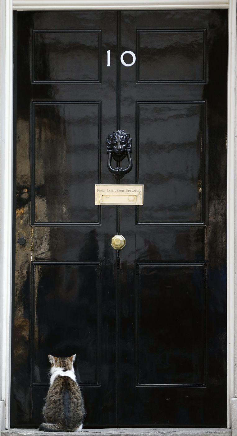 10 Downing Street, momenteel bewoond door de Britse premier David Cameron. Zijn kat zit voor de deur. Beeld null