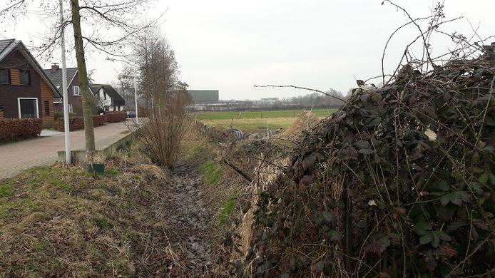 De Born-Oost in Wageningen, gezien vanaf de hoek Grintweg/Wildekamp