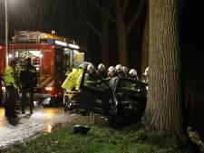 Vrouw verliest macht over het stuur en rijdt tegen boom in Hank