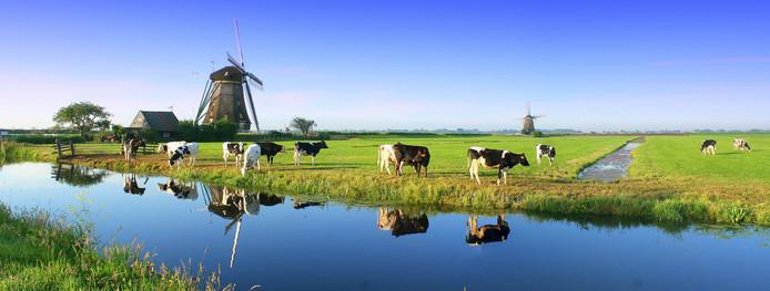 De polder bij Aarlanderveen