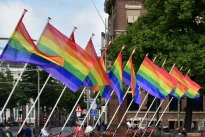 Ook bij de Hofvijver hangen vlaggen.