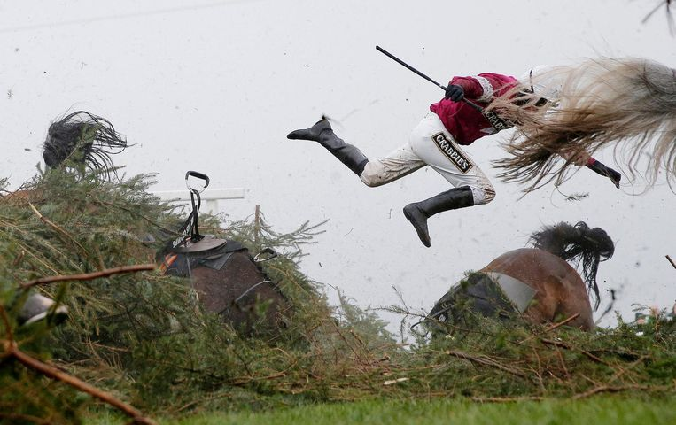 Tom Jenkins won in de categorie Sport met een foto gepubliceerd in The Guardian: jockey Nina Carberry vliegt van haar paard tijdens de Grand National Steeplechase in het Engelse Liverpool Beeld Tom Jenkins