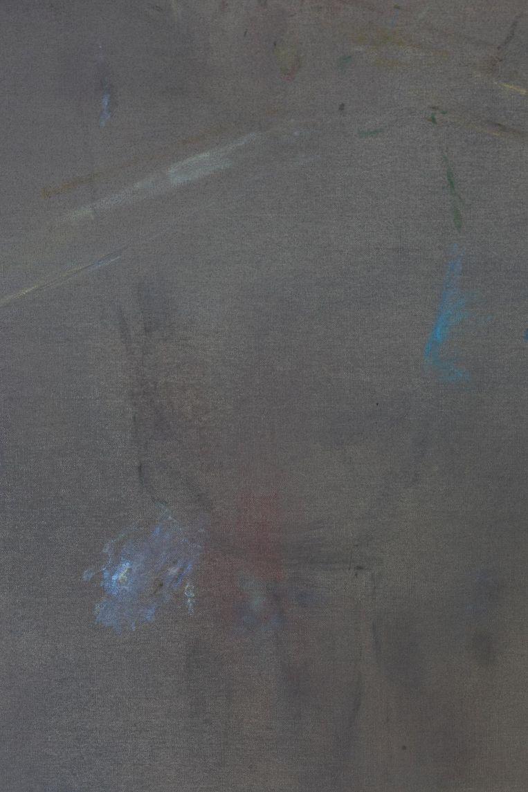 Old Master and Freddy, 2017. 160 x 120 cm (detail). Olieverf op doek (courtesy Stigter Van Doesburg) Beeld Maaike Schoorel