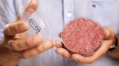 Wat als we allemaal vegetarisch eten? Veel zal het niet uithalen voor onze planeet