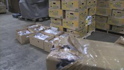 Dierentuin Blijdorp heeft de 20.000 kilo bananen gekregen die dienden als deklading van de cocaïne.