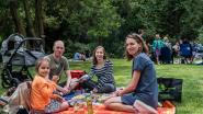 Picknick in het park verloopt anders dan normaal, maar lokt toch massa volk