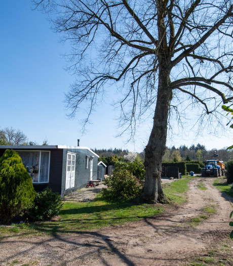 Veertig luxe huisjes en een bed and breakfast op camping Westerholt Ambt Delden