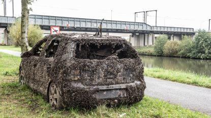 Gestolen auto lag twee jaar op de bodem van de Schelde in Ename