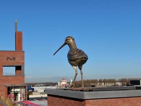 Deze metershoge vogel staat nu op het dak van de nieuwe parkeergarage Berlijnplein