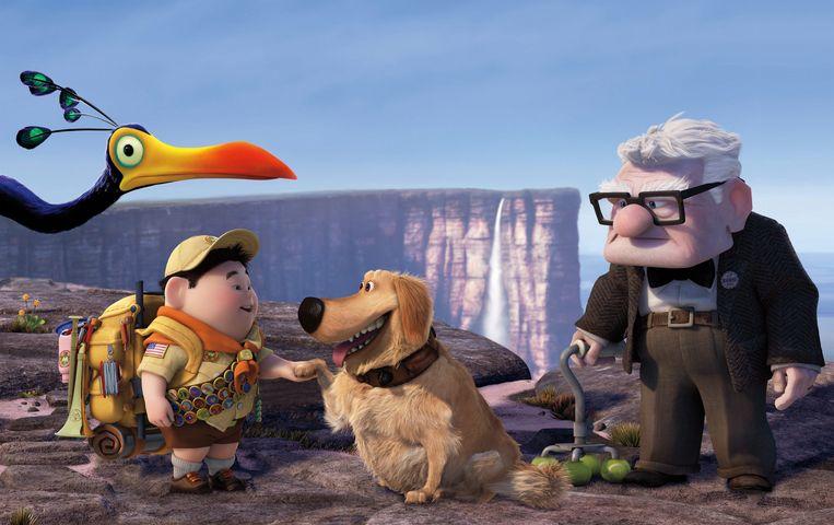 Er ontstaat een onverwachte vriendschap tussen de 'irritante' scoutsjongen Russell en de 'norse' oude weduwnaar Carl.