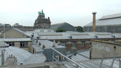 Six neemt daken Jubelpark onder handen