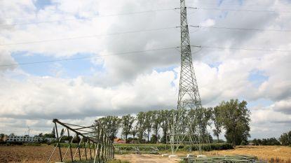 Vijftig jaar oude hoogspanningslijn krijgt nieuwe masten: Elia investeert 8 miljoen euro in vernieuwing