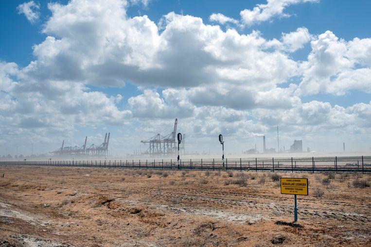 Door de extreme droogte van de laatste maanden zijn er regelmatig stofstormen of zandstormen op de Tweede Maasvlakte in Rotterdam.  Beeld Hollandse Hoogte / Paulien van de Loo