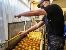 Geheim achter de beste oliebol van Nederland komt uit Holten en Zutphen: 'Je maakt geen vetbol voor vogels'