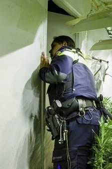 Wietkwekerij in Tholen: politie houdt in diverse plaatsen verdachten aan