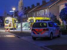 Verdachte moord Veghel naar Pieter Baan Centrum