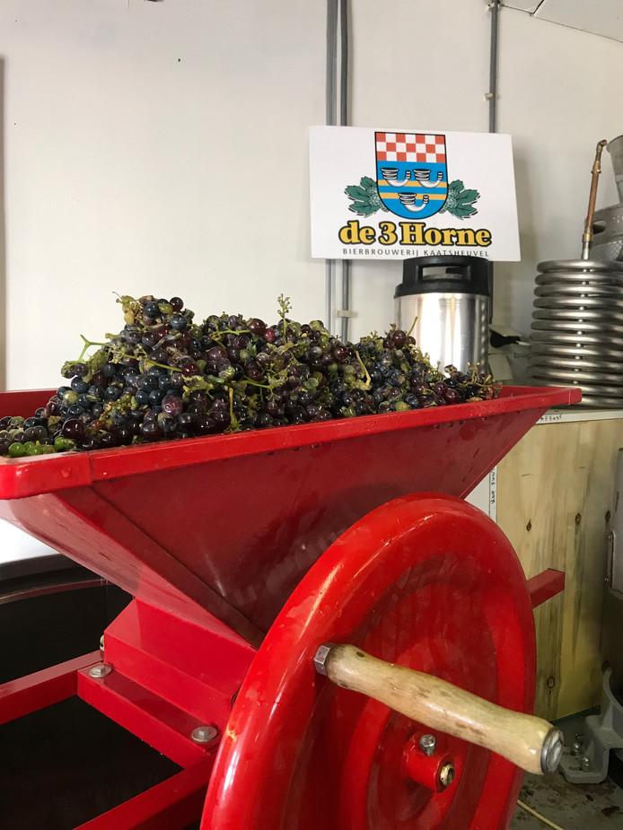 De druiven moeten eerst gekneusd worden.