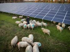 LTO tegen zonnevelden in Noordoost-Twente