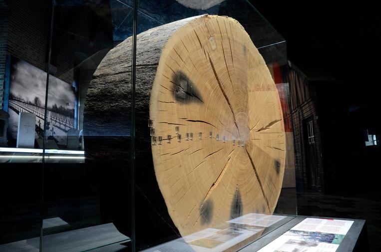 Een 235-jaar oude stamschijf