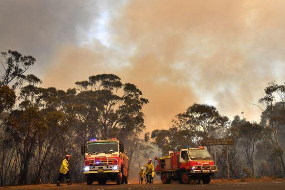 Brandweerlui in actie in New South Wales.