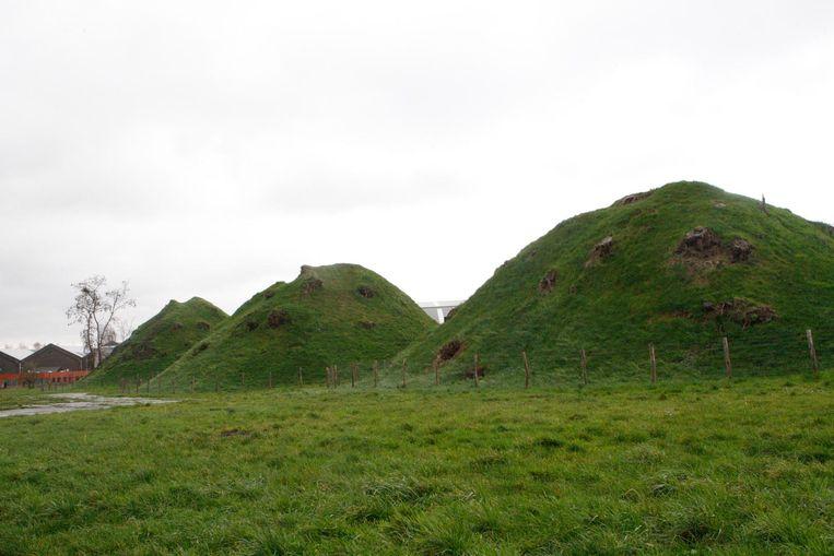 De Romeinse grafheuvels van Grimde  zijn een stukje van het Gallo-Romeins verleden van Tienen.