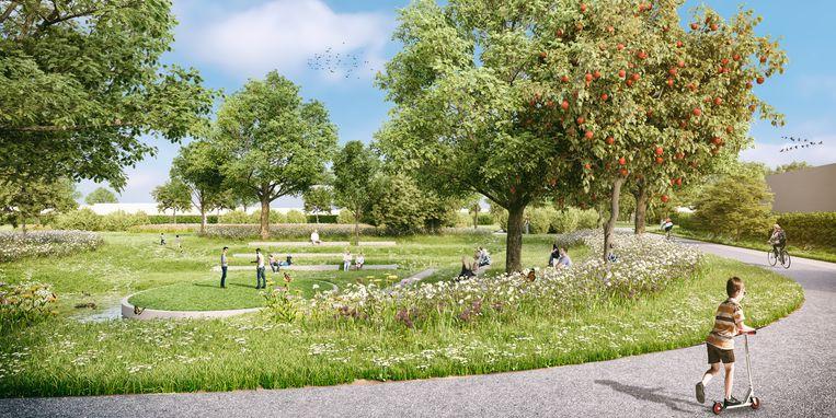 Roobaertpark wordt een groene verkaveling.
