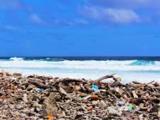 'Stranden Bonaire viezer dan Noordzeestranden'