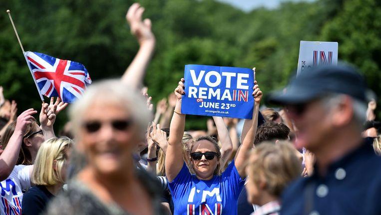 Tegenstanders van de Brexit zondag in het Londense Hyde Park. Beeld Ben Stansall / AFP