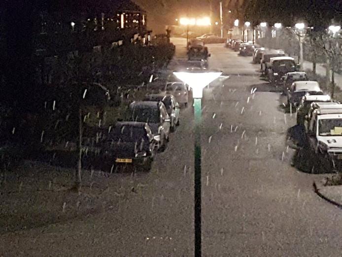 Sneeuw in Sint-Oedenrode.