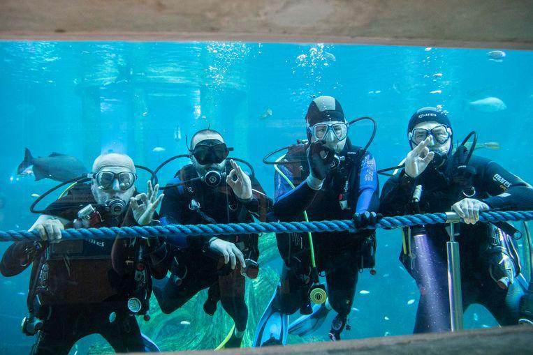 De senioren zijn onder water even rustig als op het droge.
