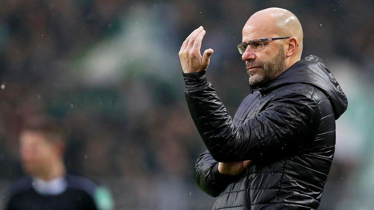 Peter Bosz in zijn tijd bij Dortmund Beeld anp
