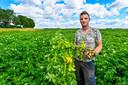 21-07-2020 - Steenbergen - Foto: Pix4Profs/Peter Braakmann - Jean Gommeren (23) is een jonge aardappelboer die ondanks alles dat er speelt toch toekomst ziet in de overname van het bedrijf van zijn vader.