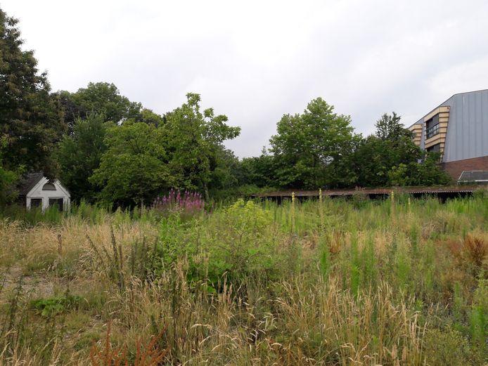 De achtertuin van de oude pastorie van Moergestel grenst aan het Antoniushuis aan de Raadhuisstraat