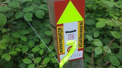 Omloop Kluisbergen stippelt nieuwe wandelroutes uit