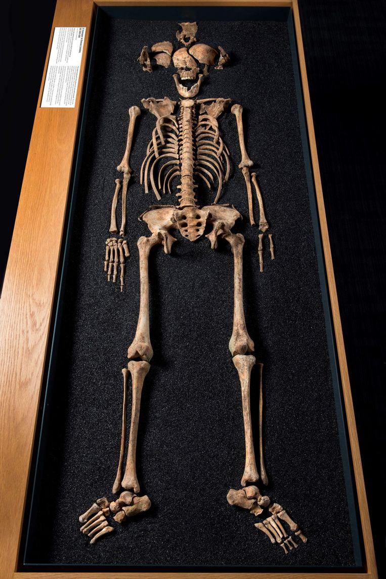 Skelet uit de Romeinse tijd in 2002 opgegraven in Londen. Beeld Museum of London