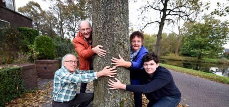 Toch kap voor lindebomen aan Woerdense Van Kempensingel