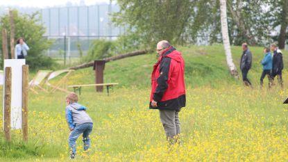 'Mooiste bijenvriendelijke tuin van Vlaanderen' staat in bloei: stad Damme opent tuin met groot feest