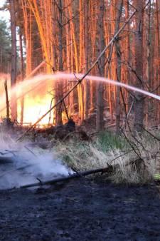 Fikse natuurbrand op grens van Reusel onder controle