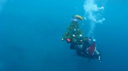 VIDEO. Champagne en een kerstboom onder water: zo vieren Russische duikers het bestaan van hun club